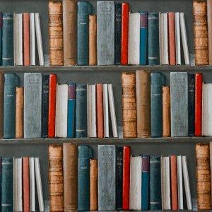 50歳からの読書